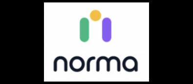 Norma - website (2)
